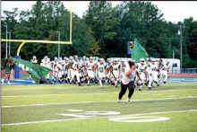 2019 Mansfield Wolverines' Season Photos