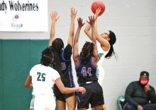 MHS Lady Wolverines Defeat the Carroll Lady Bulldogs in a Sunday Afternoon Playoff Game